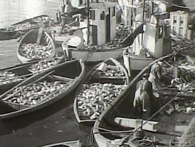 Filmen Lofotfiske - bilde av gamle fiskebåter